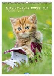Mein Katzenkalender 2021