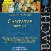 Cantatas Vol.1 (BWV 1,2,3)